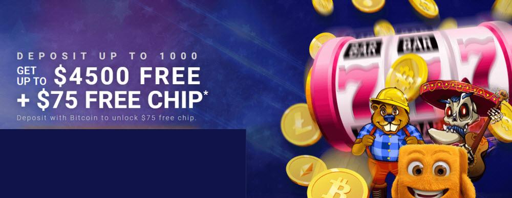 Cryptoreels casino